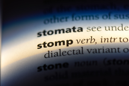 stomp word in a dictionary. stomp concept.