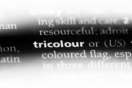 tricolour word in a dictionary. tricolour concept.