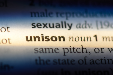 unison word in a dictionary. unison concept.