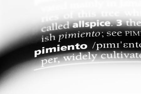 pimiento word in a dictionary. pimiento concept. Stock Photo