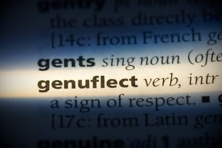 genuflect word in a dictionary. genuflect concept, definition.
