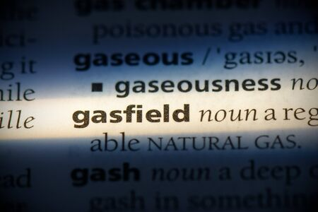 gasfield word in a dictionary. gasfield concept, definition.