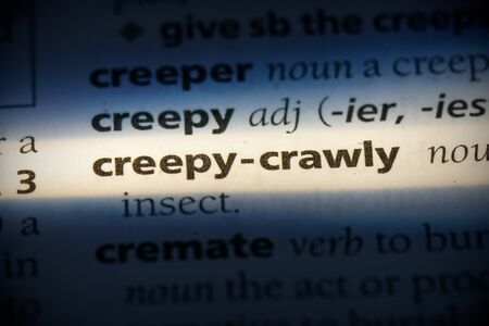 creepy-crawl word in a dictionary. creepy-crawl concept, definition.