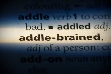 addle-brained word in a dictionary. addle-brained concept, definition.