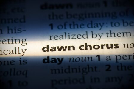 dawn chorus word in a dictionary. dawn chorus concept, definition. Stock Photo