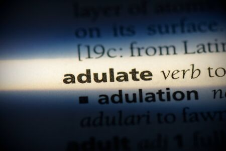 adulate word in a dictionary. adulate concept, definition. Stock Photo