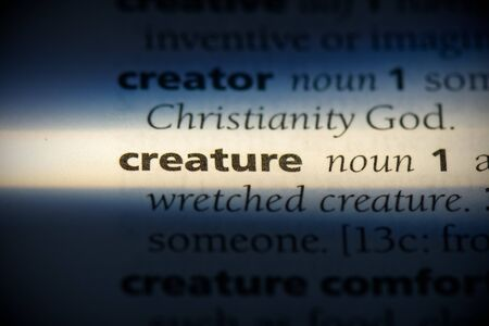 creature word in a dictionary. creature concept, definition. Stock Photo