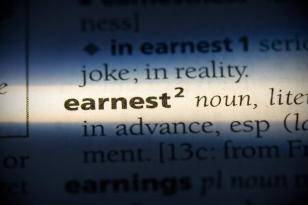 earnest word in a dictionary. earnest concept, definition.