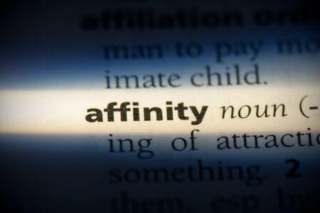 affinity word in a dictionary. affinity concept, definition. Banque d'images
