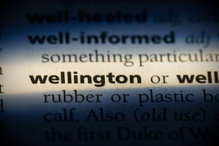 wellington word in a dictionary. wellington concept, definition.