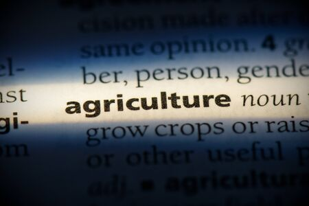 agriculture word in a dictionary. agriculture concept, definition.