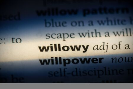 willowy word in a dictionary. willowy concept, definition. 写真素材