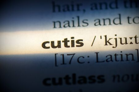 cutis word in a dictionary. cutis concept, definition.