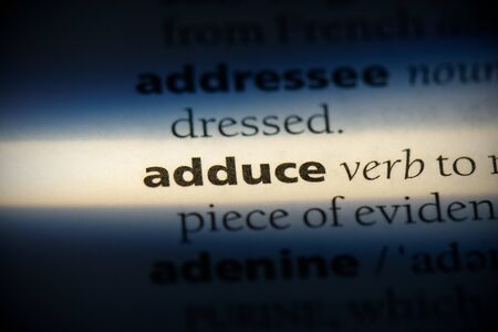 adduce word in a dictionary. adduce concept, definition.