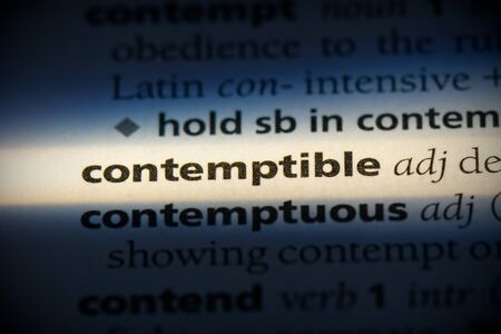 contemptible word in a dictionary. contemptible concept, definition.