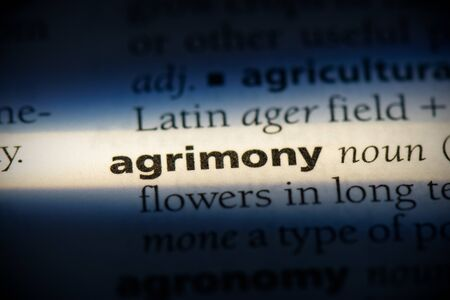 agrimony word in a dictionary. agrimony concept, definition. 写真素材