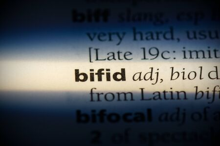 bifid word in a dictionary. bifid concept, definition.