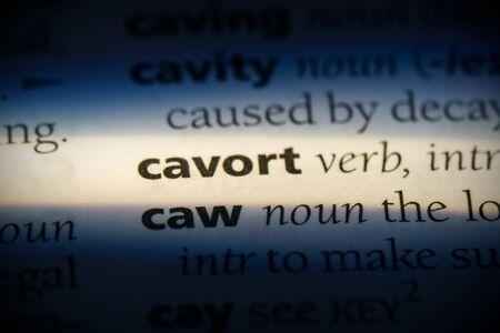 cavort word in a dictionary. cavort concept, definition.