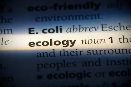 ecology word in a dictionary. ecology concept, definition. 写真素材 - 132116505