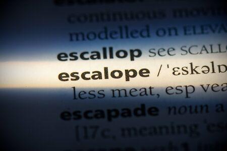 escalope word in a dictionary. escalope concept, definition.