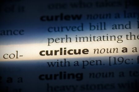 curlicue word in a dictionary. curlicue concept, definition. 写真素材 - 132116574