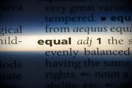 equal word in a dictionary. equal concept, definition.