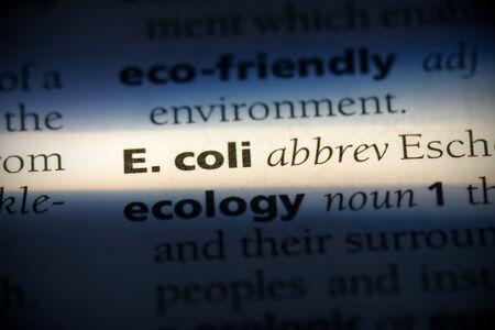 e. coli word in a dictionary. e. coli concept, definition.