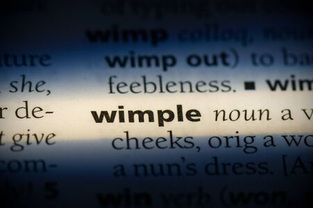 wimple word in a dictionary. wimple concept, definition.