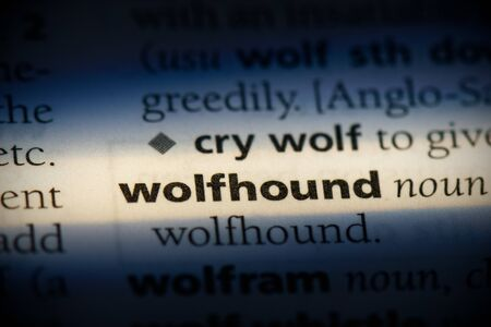 wolfhound word in a dictionary. wolfhound concept, definition. 写真素材 - 132117314