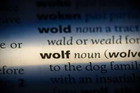 wolf word in a dictionary. wolf concept, definition.