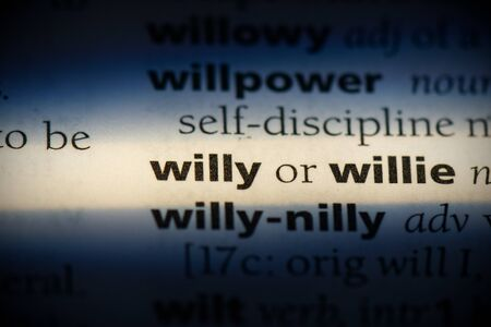 willy word in a dictionary. willy concept, definition. Stockfoto