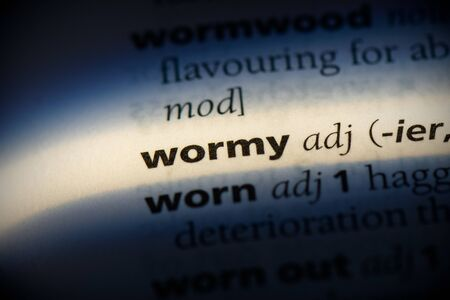 wormy word in a dictionary. wormy concept, definition.