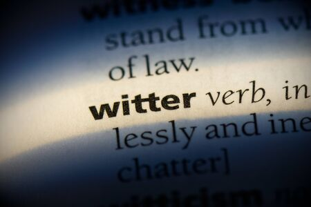 witter word in a dictionary. witter concept, definition. Stok Fotoğraf