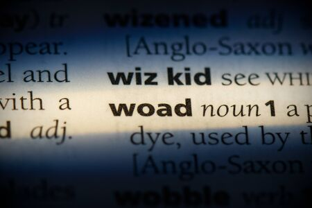 woad word in a dictionary. woad concept, definition.