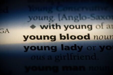 young blood word in a dictionary. young blood concept, definition. Banco de Imagens