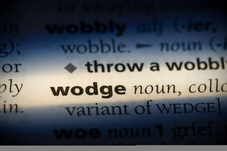 wodge word in a dictionary. wodge concept, definition.