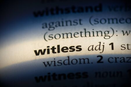 witless word in a dictionary. witless concept, definition.