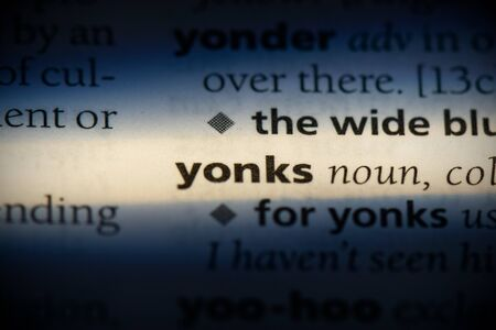 yonks word in a dictionary. yonks concept, definition.