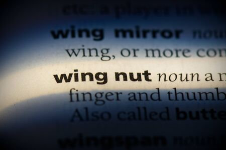 wing nut word in a dictionary. wing nut concept, definition.