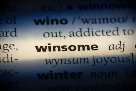 winsome word in a dictionary. winsome concept, definition. Stok Fotoğraf