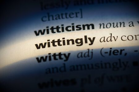 wittingly word in a dictionary. wittingly concept, definition.