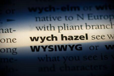 wych hazel word in a dictionary. wych hazel concept, definition. Stok Fotoğraf