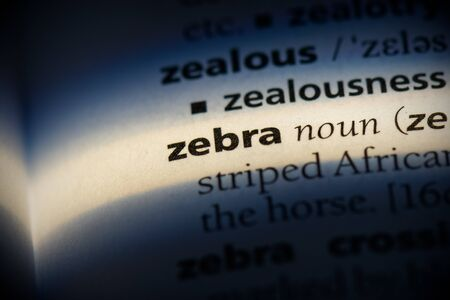 zabra word in a dictionary. zabra concept, definition.