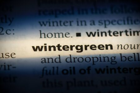 wintergreen word in a dictionary. wintergreen concept, definition.