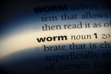 worm word in a dictionary. worm concept, definition. Stok Fotoğraf