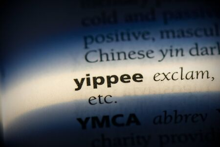 yippee word in a dictionary. yippee concept, definition.