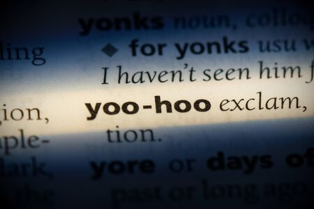 yoo-hoo word in a dictionary. yoo-hoo concept, definition.