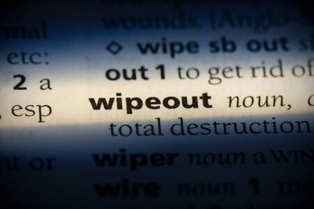 wipeout word in a dictionary. wipeout concept, definition. Stok Fotoğraf