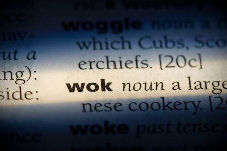 wok word in a dictionary. wok concept, definition.