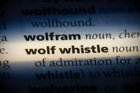 wolf whistle word in a dictionary. wolf whistle concept, definition. 写真素材